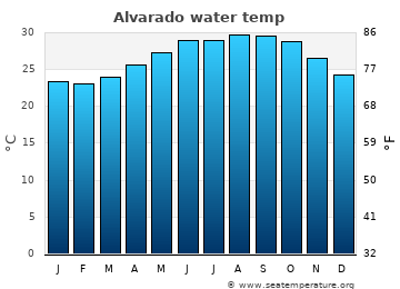 Alvarado average sea temperature chart