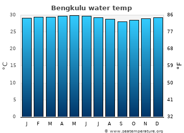 Bengkulu average sea sea_temperature chart