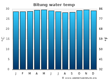 Bitung average sea temperature chart
