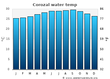 Corozal average sea sea_temperature chart