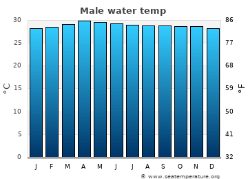 Male average sea sea_temperature chart