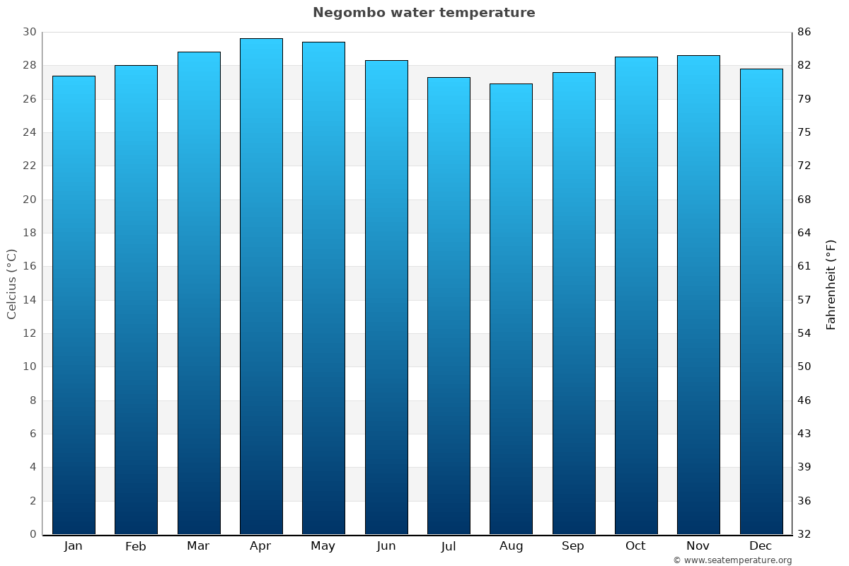 Negombo average sea temperature chart