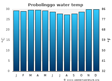 Probolinggo average sea temperature chart