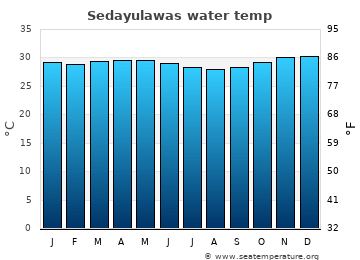 Sedayulawas average sea temperature chart