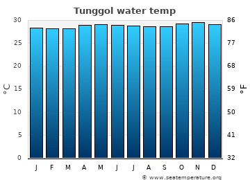 Tunggol average sea temperature chart