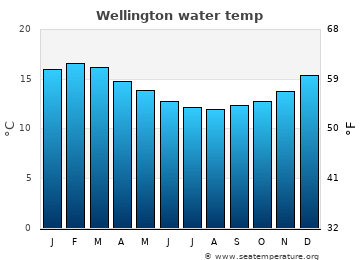 Wellington average sea temperature chart